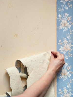 Wallpaper removal in Harrisburg, NC by Excel Pro Service LLC.