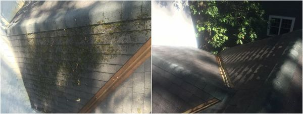 Roof Cleaning in Charlotte, NC (1)