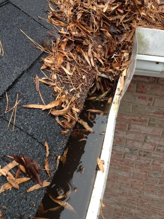 Gutter Cleaning Charlotte NC